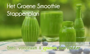 groene-smoothie-stappenplan-small